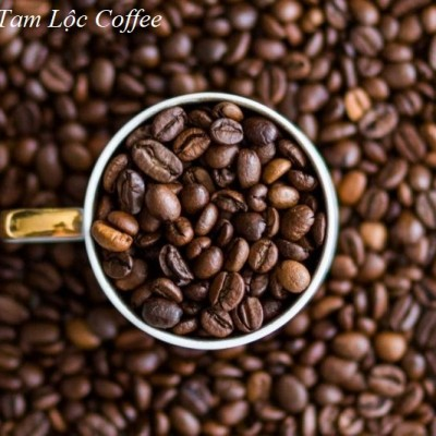 Cà phê hạt rang mộc Robusta Tam Lộc